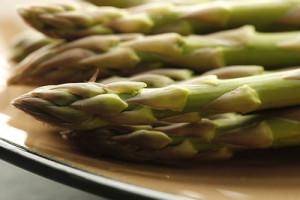 Les germes de soja : un coupe faim pas cher et très nourrissant pour